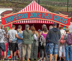 Professor Jon's Flea Circus